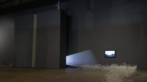 Installation view (detail), Moving Gardens at 107 Projects Sydney